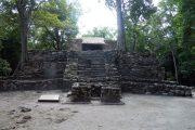 templorosa